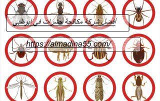 أفضل شركة مكافحة حشرات في ابوظبي