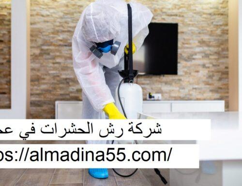 شركة رش حشرات في عجمان |0526018454| رش الحشرات