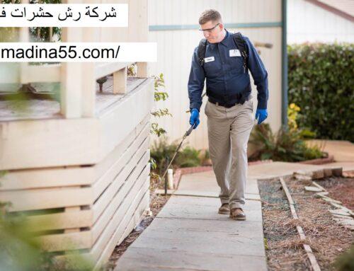 شركة رش حشرات في ام القيوين |0526018454| ابادة فورية