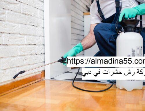 شركة رش حشرات في دبي |0526018454| رش مبيدات
