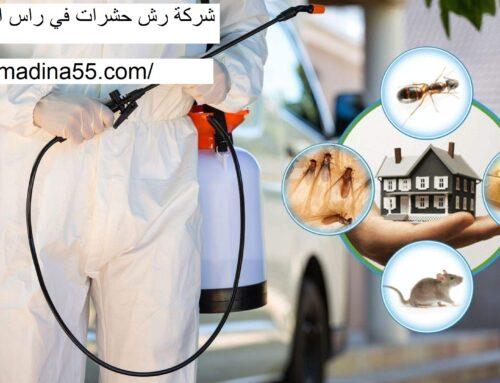 شركة رش حشرات راس الخيمة |0526018454| رش مبيدات