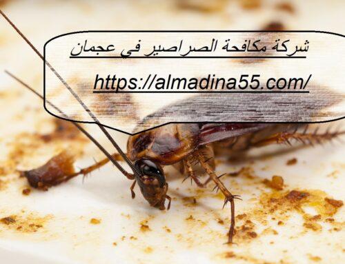 شركة مكافحة الصراصير في عجمان |0526018454| رش حشرات