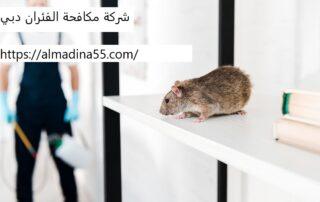 شركة مكافحة الفئران دبي